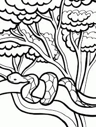 Small Picture Get This Printable Snake Coloring Pages 01827
