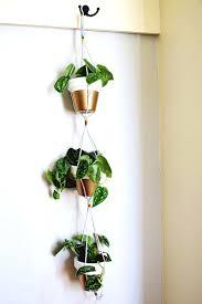 cool diy kitchen herb garden