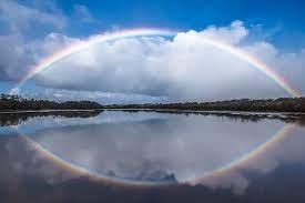 ハワイ 語 虹