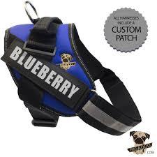 Rigadoo Dog Harness Blueberry