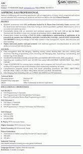 Sas Business Analyst Resume