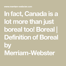 definition of boreal by merriam webster