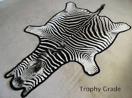 details about authentic south african zebra skin rug hide trophy grade a new
