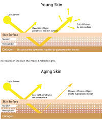 the healthier the skin the more it reflects light