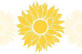 Browse svg vectors about sun term. Sunflower Svg For Cricut Graphic By Tori Designs Creative Fabrica