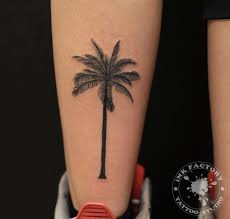 тату пальма фото на ноге