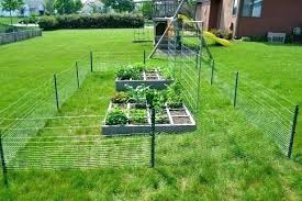 how do i keep rabbits out of my garden. Modren Rabbits Keeping Rabbits Out Of Garden Fencing To Keep Vegetable  How  Throughout How Do I Keep Rabbits Out Of My Garden S