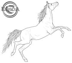 Realistic Horse Coloring Pages Free Arabian