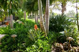 Small Picture Image result for Tropical Garden Design Romblon Philippines