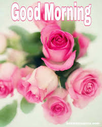 good morning romantic red rose images