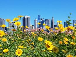 five free things to do in new york city