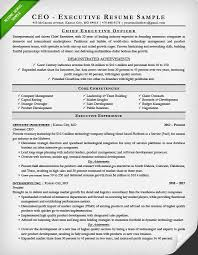 Ceo Resume Template Fascinating Executive Resume Examples Writing Tips CEO CIO CTO