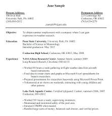 Nasa Resume Templatess – Delijuice