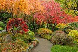 this is the related images of Landscaping In The Fall