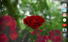 3D Rose Live Wallpaper Free for Android ...