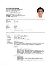 Resume Format Application Resume Format Sample For Job Application Pdf Or Cover Letter