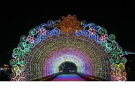 lighting decoration photos. festival lightingideal lighting decorationreal greenvivid color led lightingled decoration photos o
