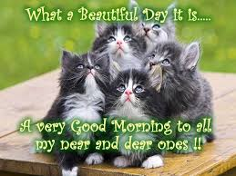 Beautiful Morning Quotes And Sayings Best of Good Morning Quotes What A Beautiful Day It Is A Very Good