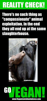 best no factory farms images animal rights  there s no such thing as compassionate animal exploitation vegan