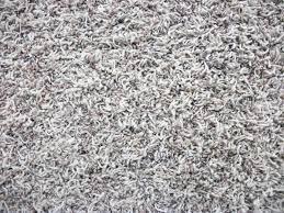 frieze carpet gray Frieze Carpet Right for You or Not – yo2mo