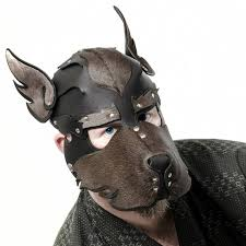 dark blue eyes are visible under a dog mask whose sides centre top and