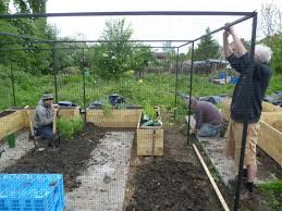 how to keep squirrels out of garden. Fencing And Netting2 How To Keep Squirrels Out Of Garden P