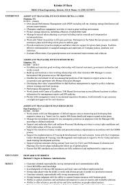 Sample Human Resources Resume Assistant Manager Human Resources Resume Samples Velvet Jobs 61