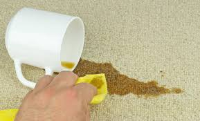 Image result for How Do You Focus On Cleaning Your Carpets In An Environmentally Friendly Way?