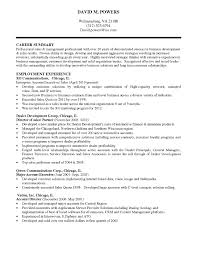 Career Summary Examples For Sales It Director Resume Summary