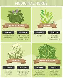 types of medicinal herbs