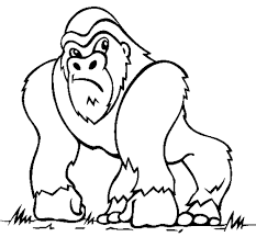Small Picture Popular Monkey Coloring Pages Cool Coloring De 705 Unknown