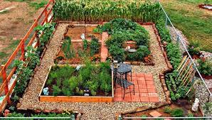 own vegetable garden design decorifusta
