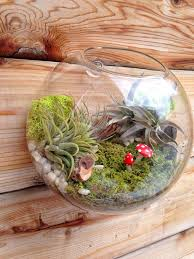 wood wall planter. 2018 air plant bubble terrarium,indoor wall planter,wall glass fish bowl for decor,home decoration from knikglass, $2.57 | dhgate.com wood planter