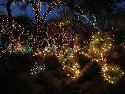 outdoor christmas lighting ideas. Christmas Garden \u0026 Patio Lighting Ideas. Cactus And Palms Outdoor Ideas