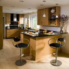 Maple kitchen cabinets contemporary Curly Maple Contemporary Kitchen Ideas Kitchen Contemporary Kitchen Idea In San Francisco With Flatpanel Houzz Maple Contemporary Kitchen Photos Houzz