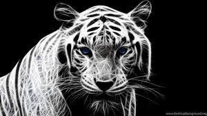 black tiger with blue eyes wallpaper. Unique Tiger Popular To Black Tiger With Blue Eyes Wallpaper E