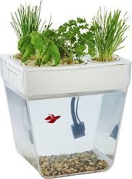 Назад к истокам <b>Набор для выращивания</b> растений и ухода за ...