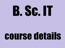 what does bsc stand for b sc it information technology career scope details apnaahangout