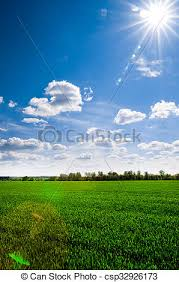 grass field background. Sky And Grass Field Background - Csp32926173