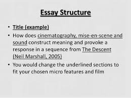 "the descent film analysis essay dissertation methodology  argumentative analysis of the essay ""first amendment"