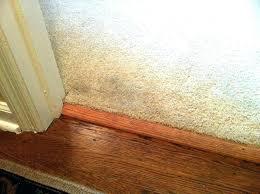 flooring thresholds