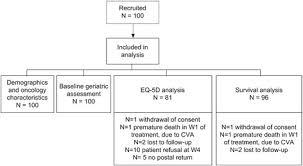 Patient Flowchart Abbreviations W Week Cva