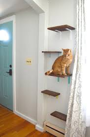 Floating Shelves For Cats Unique Cat Shelves Yes You Read That Right Plaster Disaster