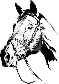 Resultado de imagen para caballo vector