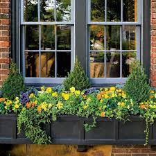 Decorative Window Boxes Decorative Window Boxes Delight 22