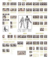 Multi Gym Exercise Chart Gym Training Multi Gym Training Plan