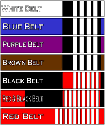 Jiu Jitsu Belt Colors Belt Image And Picture