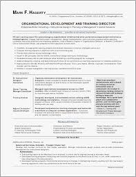 How To Build A Resume For Free Fascinating How To Build A Resume Free How Do You Make A Resume Best Resume