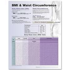 Ideal Waist Measurement Chart Bmi Waist Circumference Laminated Chart Bmi Waist