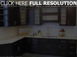 Kitchen Cabinets With No Doors Kitchen Cabinets Without Doors Maxphotous Design Porter